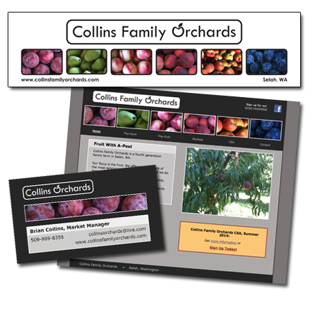 Collins Family Orchards